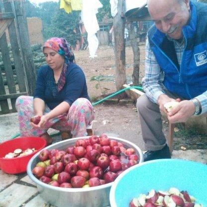 doğal köy elması