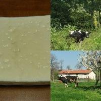 manyas kelle peyniri