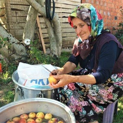 organik doğal köy elması